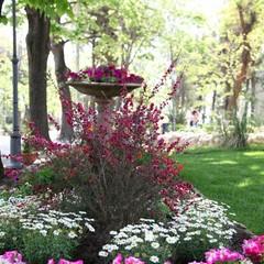 """Edizione 2012 di """"Villa in fiore"""""""