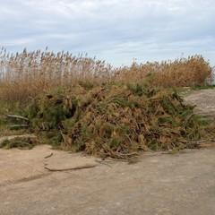 Amianto e rifiuti scaricati a Boccadoro