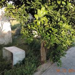 Siti con amianto a Trani