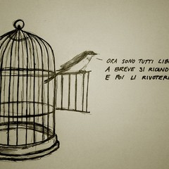 Dardo - Tutti liberi