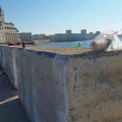 Rifiuti, sporcizia, degrado lungo il Braccio, Porto, Monastero e Mattinelle