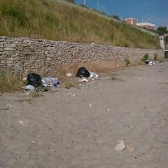 Rifiuti, sporcizia, degrado lungo il Braccio, Porto, Monastero, Mattinelle