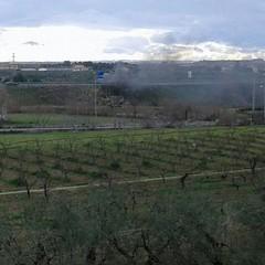 Auto in fiamme, caos sulla statale in zona Sant'Angelo