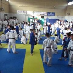 Stage a Napoli per la Judo Trani