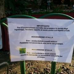 Danni e furto al presepe di piazza Albanese