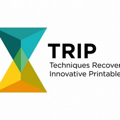 Nasce TRIP, la start up tranese che stampa il marmo in 3D