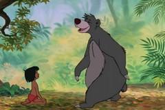 Orso Baloo