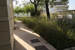 Giardino scuola Fabiano