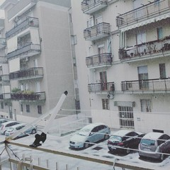 Neve a Trani il 10/01/2016