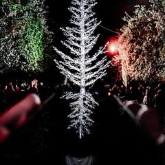 """Secondo posto """"Natale d'incanto"""""""