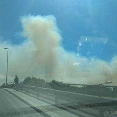 Nuovo incendio a Trani