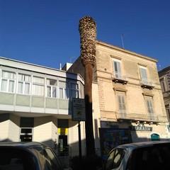 Palma in via Bovio