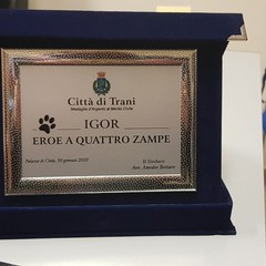 Igor, la premiazione in Comune