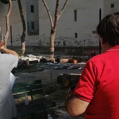 Pinetina via Andria