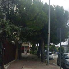 Corso Alcide De Gasperi