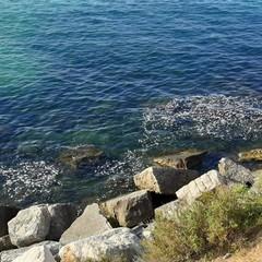 Schiuma nel mare