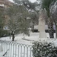 Neve a Trani 27/2/2018