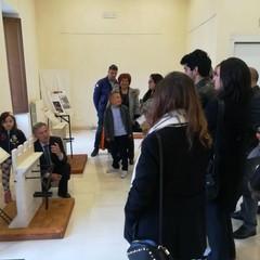 Villa Telesio, Polo museale e Palazzo Beltrani