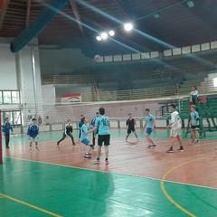 Liceo Vecchi