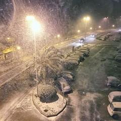 Neve a Trani 2017