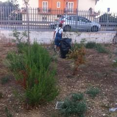 Piazzetta Peter Pan, i cittadini puliscono il parco giochi