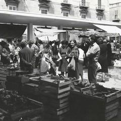 Trani: economia e lavoro. Palazzo Beltrani