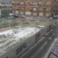 Neve a Trani il 10/01/2017