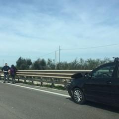 Auto contro guardrail sulla statale 16 bis, nessun ferito