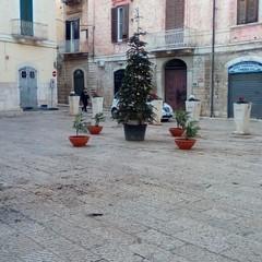 Piazza Tomaselli