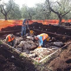 Sito Paleolitico tra Andria e Corato
