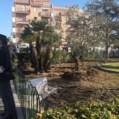 Cerimonia in Piazza Albanese