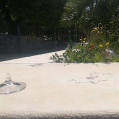 Bicchieri e bottiglie vuote fuori la villa comunale