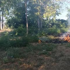 Incendio nel giardino dell'ospedale