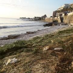 Bonifica della costa