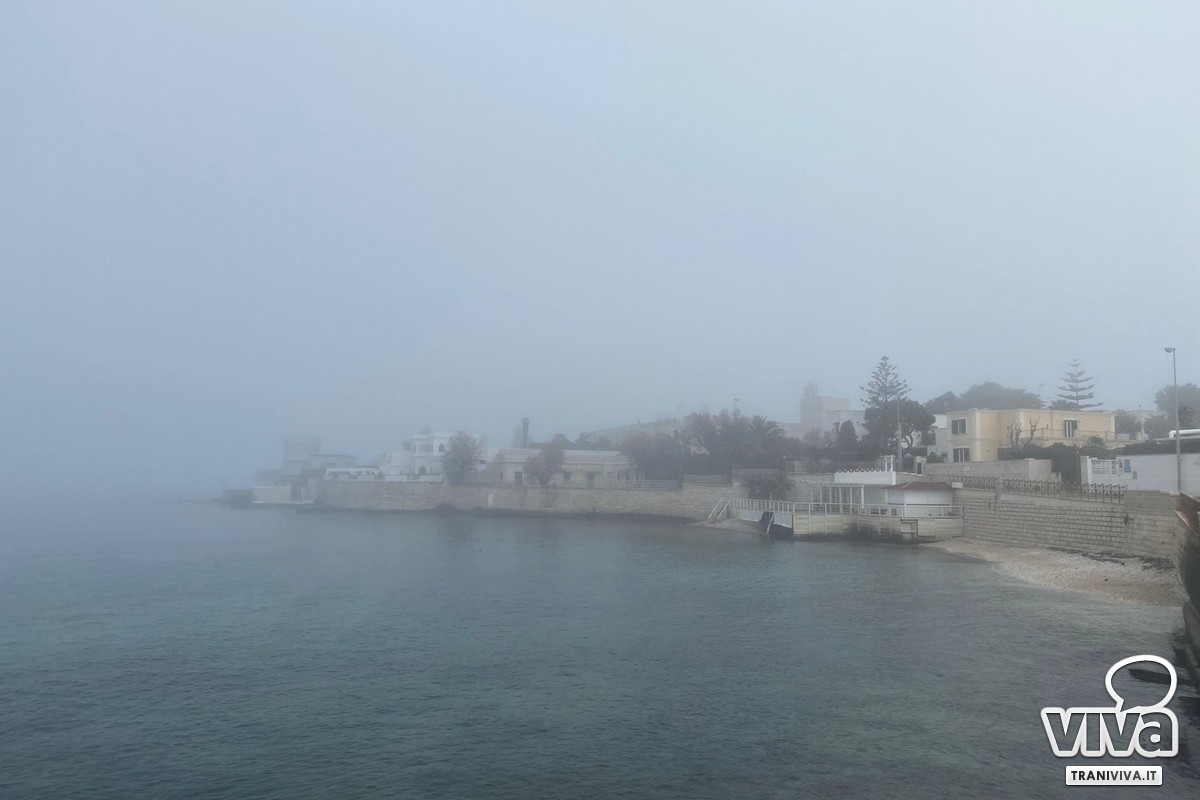 Nebbia a Trani