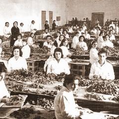 Manifattura tabacchi nel convento di Santa Chiara