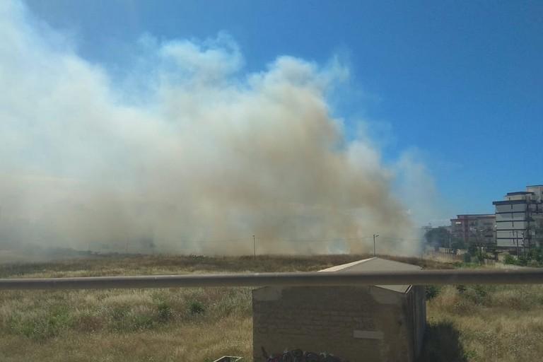 Incendio di sterpaglie nei pressi del cavalcavia di via Superga