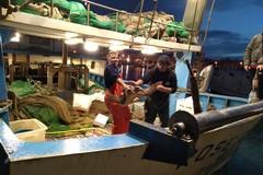 Il motopesca Poseidon recupera Garda, la stessa tartaruga già salvata a dicembre 2016