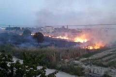 Incendi nelle campagne, il Comune emana l'ordinanza