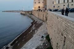 Spiagge e fondali puliti, Sammontana all'opera sul litorale del Castello