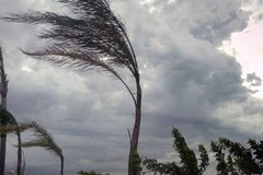 Meteo, allerta arancione per vento a Trani