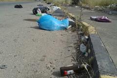 In arrivo un piano straordinario per la pulizia delle strade provinciali
