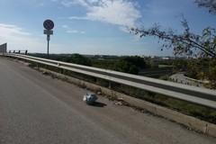 Rifiuti abbandonati sulla SS16 nel tratto Trani-Molfetta, l'associazione Pro Natura: «Chi deve pulire?»