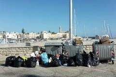 Porto di Trani, ma quando ci decideremo a ripulirlo?