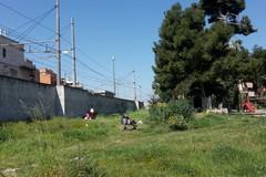 Villa Bini, aggiudicata in via definitiva la manutenzione del parco