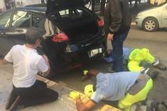 Intrappolato nel motore di un auto, gattino salvato dai passanti
