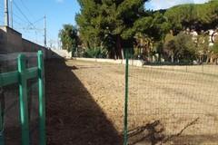 Villa Bini, terminati gli interventi di bonifica del parco