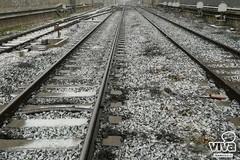 Allerta meteo, attivato il piano emergenza neve sulla linea Foggia-Bari
