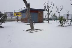 Ancora neve a Trani, in azione lo spargisale per le vie della città
