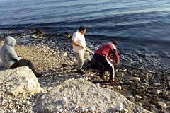 Pulizia della costa, l'associazione Amici del mare alle prese con la bonifica dello Scoglio di Frisio